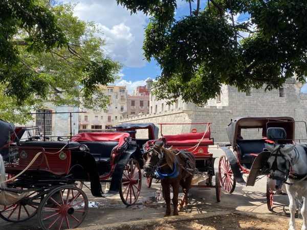 marieke's-art-of-living-cuba-tour10